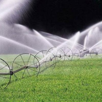 Why drip irrigation saves water than traditional irrigation