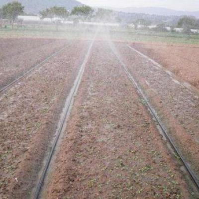 Points and considerations of fertigation with drip irrigation